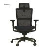 Aewony Ergo3D Ergonomic Office Chair Armchairs